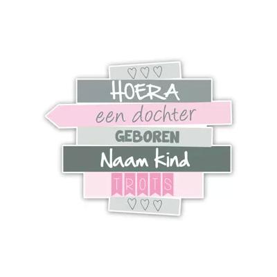 Geboorteborden wegwijzer bordjes - roze